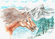 The Horse Pastels Prints - Wild And Free Print by Shaunna Juuti