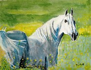 Horse Portrait Posters - Wild as the Wind Poster by Judy Kay