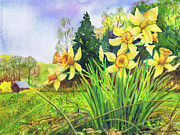 Yellow Flowers Painting Prints - Wild Daffodils Print by Susan Herbst