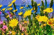 Daisies Paintings - Wild daisies by George Atsametakis