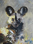 Robert Teeling - Wild Dog Portrait