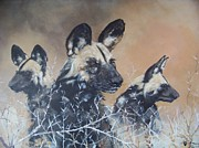 Wild Dog Trio Print by Robert Teeling