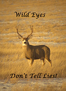 Complimentary Colours Earth Tones Posters - Wild Eyes Do Not Tell Lies Poster by Laura Bentley