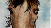 Comanche Paintings - Wild Eyes by Elizabeth Briggs