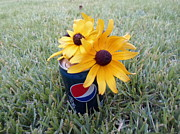 Pepsi Can Prints - Wild Flowers Print by Jenna Mengersen