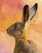 March Hare Framed Prints - Wild Hare Framed Print by Tanya Hall