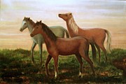 Wild Horses At Sunset. Print by Laila Awad  Jamaleldin