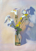 Verbena Paintings - Wild Iris Poster STudy by Elizabeth B Tucker
