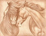 Wild Horse Drawings - Wild Love by Genevieve Desy