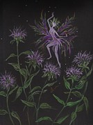 Dawn Fairies - Wild Monarda