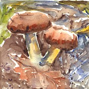 Mushrooms Drawings Posters - Wild Mushrooms Poster by Carol Wisniewski