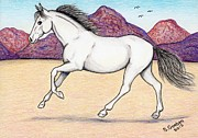 Wild Horse Drawings - Wild Mustang -- Running Free in the Desert by Sherry Goeben