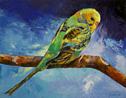 Parakeet Prints - Wild Parakeet Print by Michael Creese