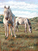 White Horses Pastels Framed Prints - Wild Ponies Framed Print by Deb LaFogg-Docherty