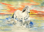 Wild Horse Paintings - Wild White Horse by Melly Terpening