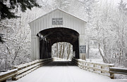 Wildcat Photography - Wildcat Bridge - white...