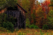Brenda Giasson - Wilderness Barn