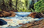 Falls Paintings - Wilderness River I by John W Walker