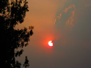 Smoky Skies Prints - Wildfire Sky Print by Denise Mazzocco