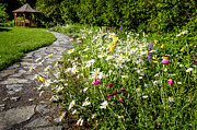 Leading Prints - Wildflower garden and path to gazebo Print by Elena Elisseeva