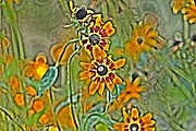 Jahred Allen Photography Posters - Wildflower Poster by Jahred Klahre
