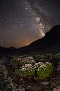 Juans Prints - Wildflower Runoff Under The Stars Print by Mike Berenson