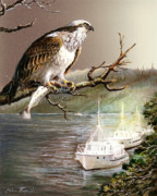 Lake Scene Paintings - Wildlife Ospey Fishing Competition by Gina Femrite