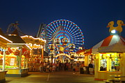 All - Wildwood at Night by Kathy Dahmen