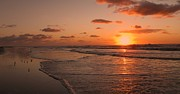 David Dehner Prints - Wildwood Beach Sunrise II Print by David Dehner