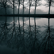 Silhouetted Metal Prints - Wilhelminapark Metal Print by David Bowman