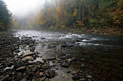 Rushing Water Prints - Williams River Autumn Mist Print by Thomas R Fletcher