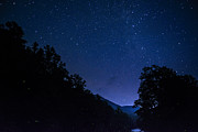 Lightning Bugs Prints - Williams River Summer Solstice Night Print by Thomas R Fletcher