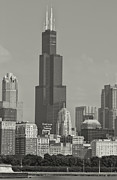 Chicago Skyline Photos - Willis Tower Chicago Black and White by Jonathan Davison