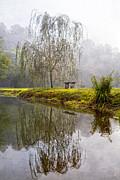 Debra and Dave Vanderlaan - Willow Tree at the Pond
