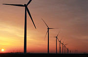 Wind Pastels Posters - Wind Farm Sunrise Poster by Jackie Novak