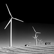 Harvest Time Prints - Wind Farm Print by Trever Miller