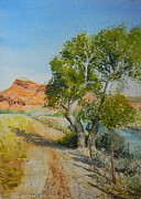 Wyoming Paintings - Wind River Cottonwood by Todd Derr