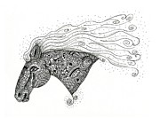 Studio Drawings - Wind Through Mane by Shannon Story