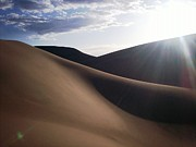 Sanddunes Photo Posters - Windblown Curves Poster by Carlee Ojeda