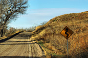 Bill Kesler Photos - Winding Country Road by Bill Kesler