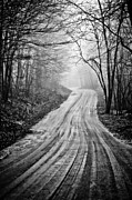 Back Road Prints - Winding Dirt Road Print by Karol  Livote