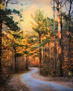 Autumn Landscape Art - Winding Fall Parkway 2 by Jai Johnson