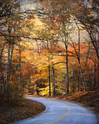 Autumn Landscape Art - Winding Fall Parkway by Jai Johnson