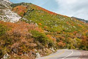 Sue Smith - Winding Mountain Road in...