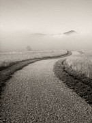 Gravel Road Posters - Winding Path and Mist Poster by Marilyn Hunt