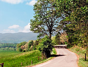 Pare Prints - Winding Road on Summer Day in Cades Cove Smoky Mountain Nation Print by Sherry  Curry