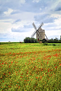 Cloudy Sky Posters - Windmill and poppy field in Brittany Poster by Elena Elisseeva