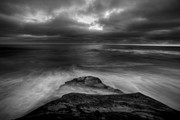 La Jolla Prints - WindNsea Point BW Print by Peter Tellone