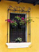 Flower Boxes Posters - Window at Old Antigua Poster by Kurt Van Wagner