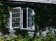 Cabin Window Digital Art Prints - Window at The Clearing 2 Print by David Blank